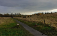 Kirklees 35,000 Trees Closer to Being Carbon Neutral