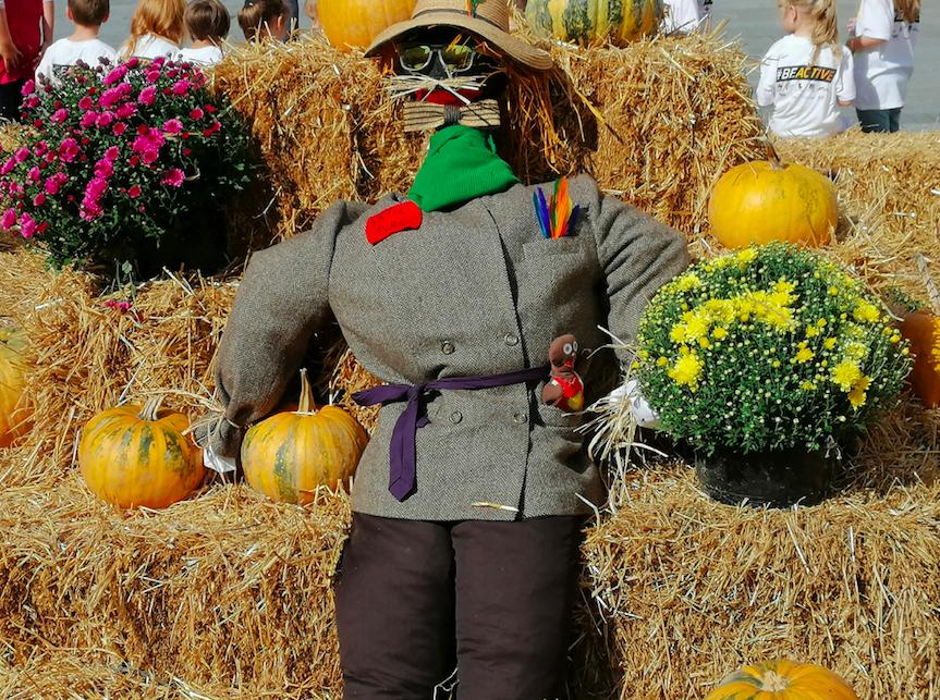 Scarecrow Festival returns to Almondbury Ward this weekend
